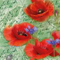 Art.No.13314210- Салфетки Painted poppies green от